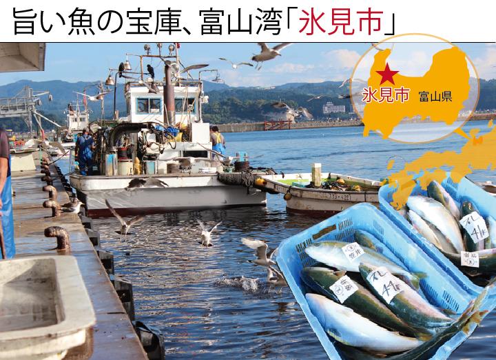 旨い魚の宝庫、富山湾「氷見市」