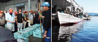 全て氷見漁港で水揚げされた天然魚